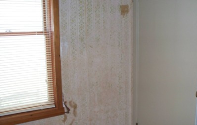 old_wallpaper_compressed