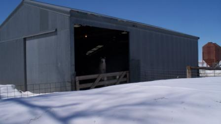 sheepbarn_snowdrift_03_compressed