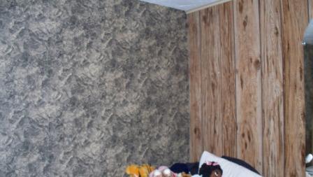 wallpaper_paneling_compressed